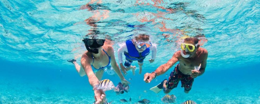 Cayman Island Private Snorkelling